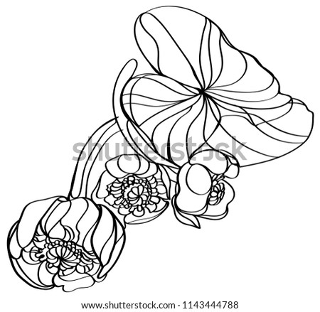 Vector Clipart Water Yellow Water Lily Stock Vector Royalty Free
