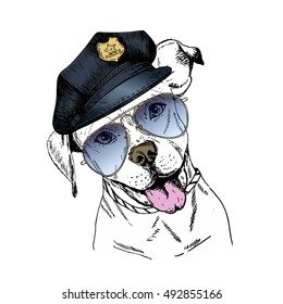 Vector close up portrait of police dog. English pitbull wearing the peak cap and sunglasses. Hand drawn domestic pet dog illustration. Isolated on white background.