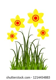 vector clump of daffodils isolated on white background