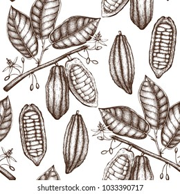 Vector Cocoa tree illustration. Vintage background with hand drawn with leaves, flowres, fruits and beans. Botanical seamless pattern. Aromatical and tonic elements sketch.
