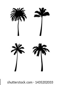 Vector coconut palm tree silhouette set. Vector illustration isolated on white background. Palms for your graphic design. EPS10