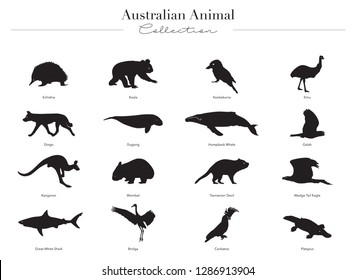 Vector collection of Australian Animals in silhouette