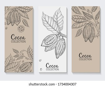 Vector collection of banners made of cocoa. Hand drawn illustration with cocoa brunches, beans and leafs.