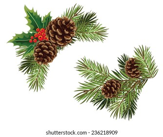 Vector collection of Christmas tree branches with pine cones and mistletoe