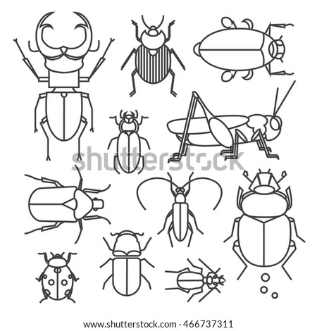 Vector Collection Different Bugs Icon Set Stock Vector Royalty Free