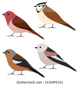 Vector collection of garden bird. Long-tailed tit, crested tit, chaffinch, rosefinch isolated on white background. Colorful bird set in flat style
