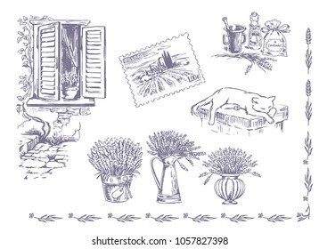 Vector collection of graphic lavender flowers sketch. Vector set of hand drawn lavender illustration in lilac color. Vintage collection of lavender flowers sketch isolated on white. Provence, France.