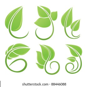 vector collection of green leaf's images