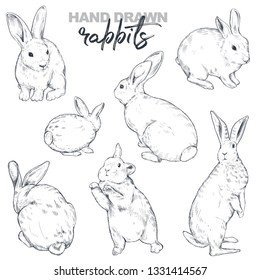 Vector collection of hand drawn rabbits. Realistic sketch animals. Easter set