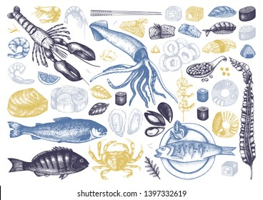 Vector collection of  hand drawn Seafood illustrations. With fresh fish, lobster, crab, oyster, mussel, squid ring, caviar, sushi, shrimps. Vintage food sketches set. Menu template