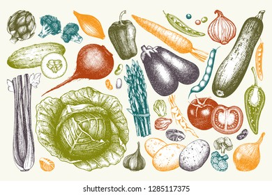Vector collection of hand drawn vegetables, kitchen herbs and spices illustrations. Healthy Food drawings set.  Vintage farm fresh daily products.