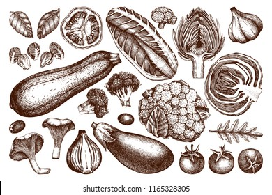 Vector collection of hand sketched vegetables. Vintage veggies and spices illustrations set. Healthy food drawings for vegetarian or organic menu design. Farm fresh products in engraved style