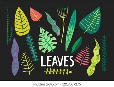 Vector collection of hand-drawn colorful leaves of different plants on a black background.