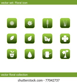 Vector collection of icons on the flora and ecology