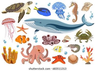Vector collection of inhabitants and objects of sea fauna of octopus, whale, jellyfish, shrimp, fish, crab, shell, turtle, corals on white background.