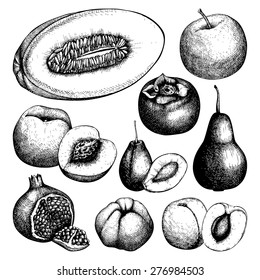 Vector collection of ink hand drawn fruits sketch for kitchen and restaurant design. Vintage colorful fruit illustration for vegetarian food.
