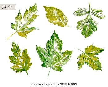 Leaf Print Images, Stock Photos & Vectors | Shutterstock