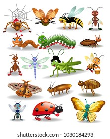 vector collection of insects isolated on a white background