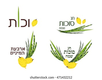 Vector collection of labels and elements for Jewish holiday. Icons and badges with signature Happy Sukkot, four species in Hebrew.