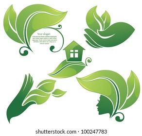 vector collection of leaf frames ecological symbols and signs