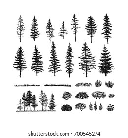 Vector collection of pines, firs, bushes and grass. Hand drawn sketch isolated on a white