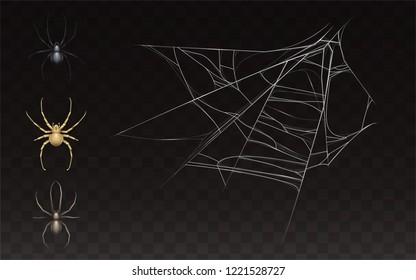 Vector collection of realistic cobweb and spider. Web with insect isolated on dark background. White sticky, scary element for Halloween, horror decoration Natural arachnid net.