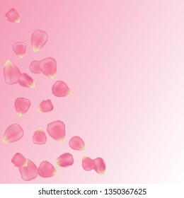 Vector collection of realistic pink rose petals isolated on tender pink gradient background. Floral set for romantic and spring design.