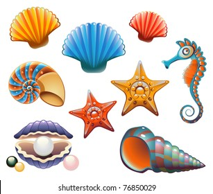 Vector Collection of Sea Shells and Stars