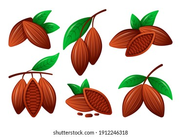 Vector Collection, Set of Cocoa Beans with Leaves. Organic Healthy Food. Flat Illustration for Web on White Background.