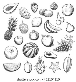 Vector collection of sketches of exotic fruits on white background