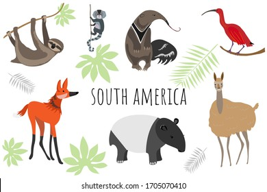 Vector collection with south american animals. Illustration with cute animals for children. Sloth, marmoset, anteater, ibis, maned wolf, tapir, llama.