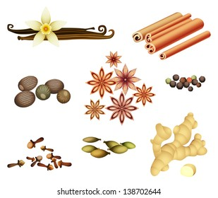 Vector collection of spices