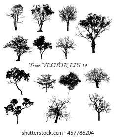 Vector Collection of trees silhouettes
