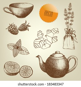 Vector collection of vintage hand drawn tea time and spices illustrations.