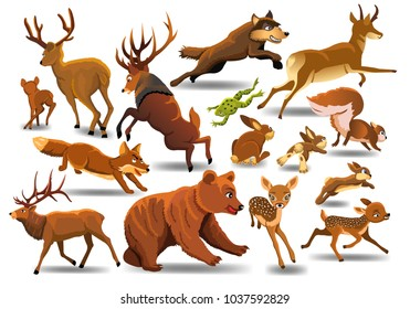 Vector collection of wild animals running