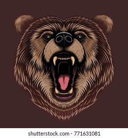 Vector Color Angry Bear Head Illustration