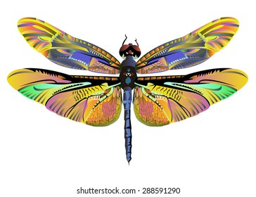 Vector Color Art Dragonfly Nature Wildlife Stock Vector Royalty