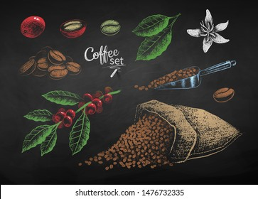Vector color chalk drawn set of illustrations of coffee beans, berries and sack on chalkboard background.
