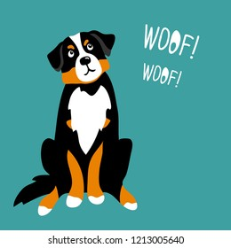 vector color cute bernese mountain dog pet animal  cartoon doodle pattern simple childish design for textile paperwoof word lettering