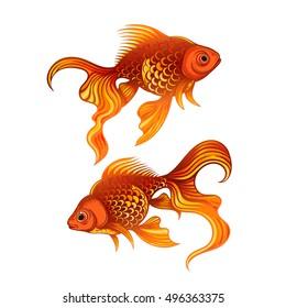 Vector Color Goldfish Illustration