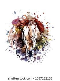 Ilustraciones Imágenes Y Vectores De Stock Sobre Caballos Corriendo