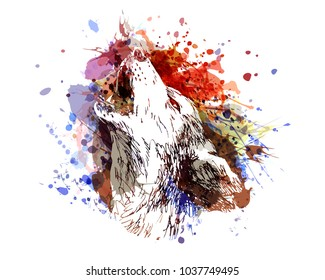 Vector color illustration of a howling wolf