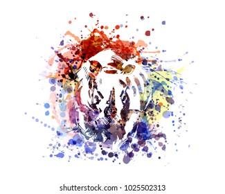 Vector color illustration rhinoceros