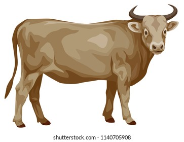 vector color illustration of a standing cow with horns. side view