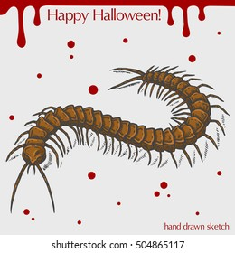 Vector color linear illustration of the scary centipede,blood stains,text Happy Halloween on the grey background.Hand drawn sketch of the centipede.Image in vintage style for your design.