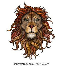 Vector Color Lion Illustration