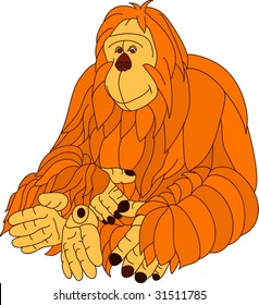 vector -  color orangutan isolated on background