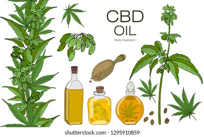 Vector color set of hand drawn