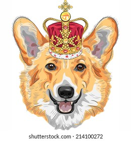 Vector color sketch of the dog Pembroke Welsh corgi breed in gold crown