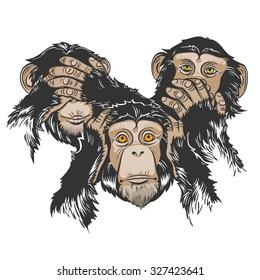 Vector Color Three Monkey Illustration